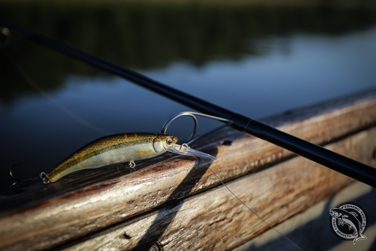 Savage Gear 3D Minnow Diver