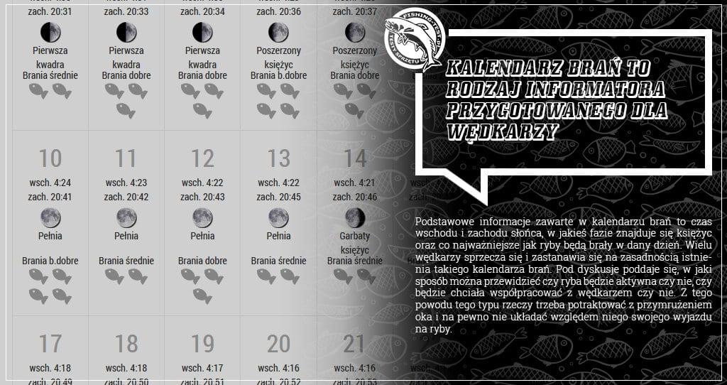 kalendarz brań