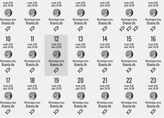 Kalendarz brań to rodzaj informatora przygotowanego dla wędkarzy.