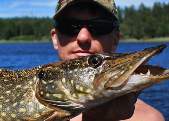 Wpływ temperatury wody na brania ryb