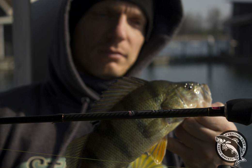 robinson_daiflex_speeder_perch_spin_198_ 2-10g_07
