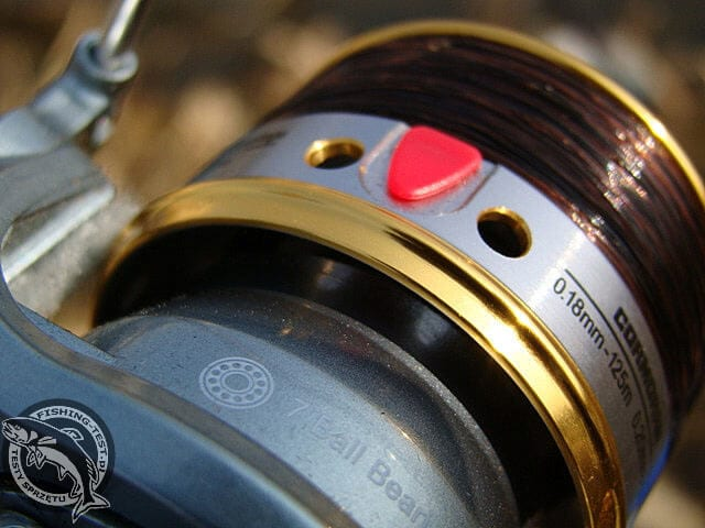 cormoran kołowrotek