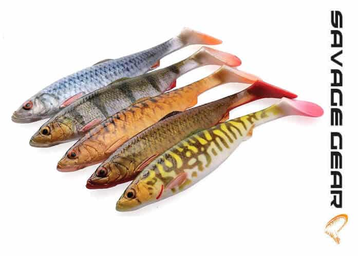 4d herring shad